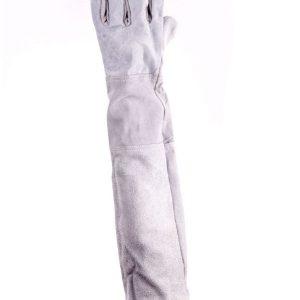 ถุงมือหนังท้องล้วนขอบยาวถึงไหล่ ยาว22นิ้ว หนา1.2-1.3มม.